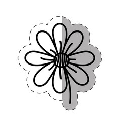 flower garden natural monochrome vector image