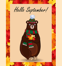 hello september greeting card with cute bear in vector image