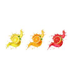 set grapefruit lemon orange juice splashes vector image