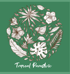 tropical paradise palm leaves and exotic flowers vector image