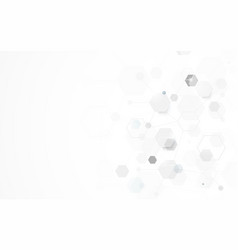 Abstract white geometric hexagon background vector