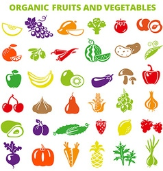 ColorFruitsVegetables vector image