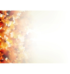 Falling autumn leaves on light EPS 10 vector image