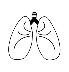 lungs cartoon icon image vector image