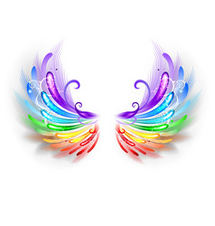 Rainbow Wings on a White Background vector