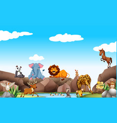 scene with wild animals by the pond vector image
