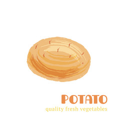 fresh potato isolated on white background vector image vector image