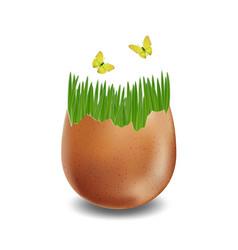 brown broken eggs on white background vector image