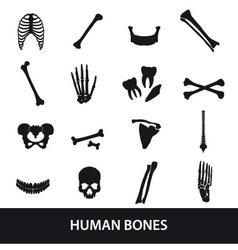 Human bones set icons eps10 vector