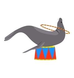 Icon of circus seal Seal playing a circle vector image