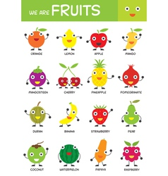 Kids basic fruits chart vector