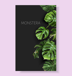 Monstera border with green tropical leaves vector