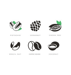 nuts and seeds icons set pistachio cedar nut vector image