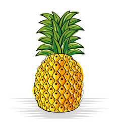 Pineapple fresh and healthy fruit vector