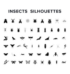 set of insect silouettes isolated on white vector image