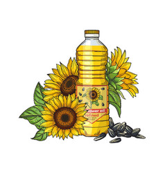 sunflower oil sketch seeds sunflowers and vector image