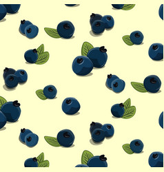 bilberry pattern hand drawn blackberry vector image vector image