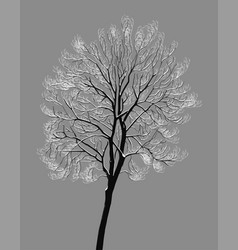 A tree with snow-covered branches vector