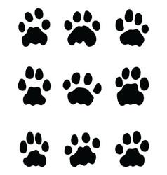 black footprints of lions vector image