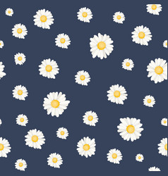 floral daisy chamomile botanical seamless pattern vector image