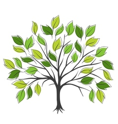 Hand draw abstract green tree vector