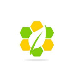 leaf organic square logo vector image