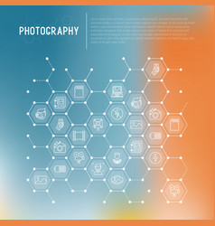 Photography concept in honeycombs vector