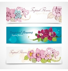 Tropical flower banners vector image vector image