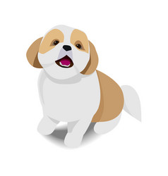 adorable sitting brown and white dog with shadow vector image