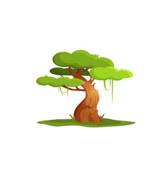 character tree vector image