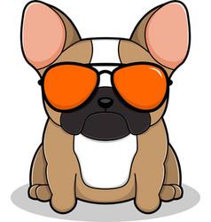 cool bulldog vector image