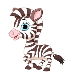 Cute zebra posing isolated on white background vector