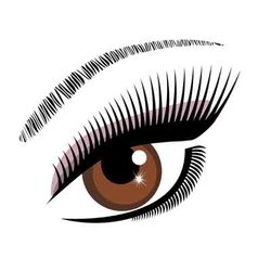 eye brown vector image
