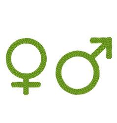 Gender symbol made of green clover vector