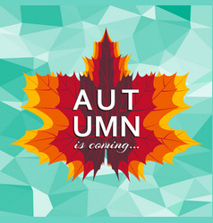autumn is coming background template with bright vector image