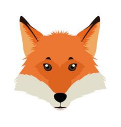 fox mascot icon head and muzzle or snout vector image