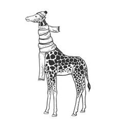 Giraffe in scarf and hat sketch vector