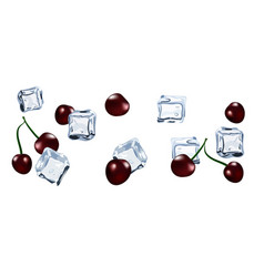 Ice cube with berry cherry isolated vector