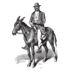 Man on mule vintage vector
