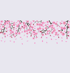 sakura tree flower branches with realistic pink vector image