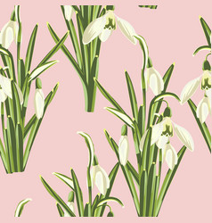 seamless pattern with bouquet snowdrop vector image