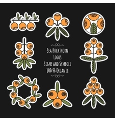 Set of sea buckthorn logos stickers on black vector image