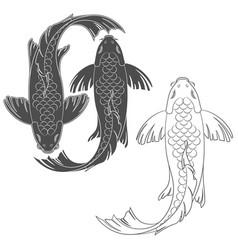 Set of with a mirror koi carp vector