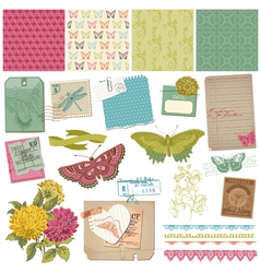 Vintage Butteflies and Flowers vector image