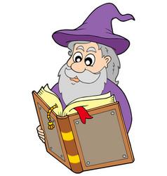 Wizard reading magic book vector