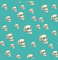human skull seamless pattern background vector image