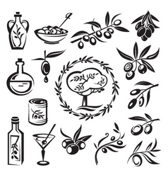 olive graphics vector image