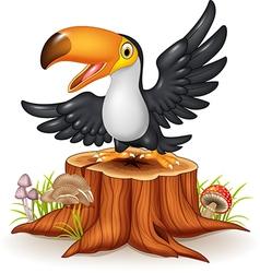 Cartoon funny toucan on tree stump vector image vector image