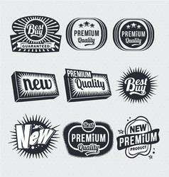 Retro vintage labels vector image vector image