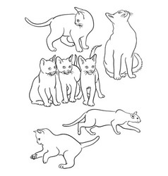 cat line on a white background 04 vector image